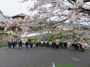 ほし桜 (1)
